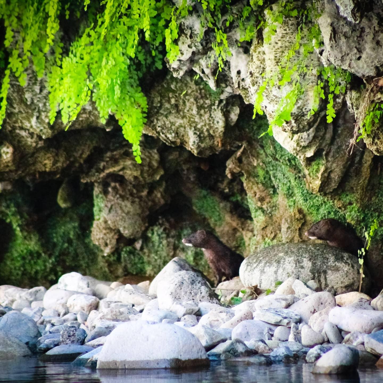 03-09-2021_non_solo_bici_tre_paesi_dell039interno_uniti_per_un_turismo_sostenibile.html